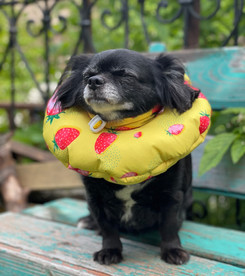 Защитный мягкий воротник-подушка для кошек и собак от 2,5 до 4 кг, размер S, Freddy's Friends Brand
