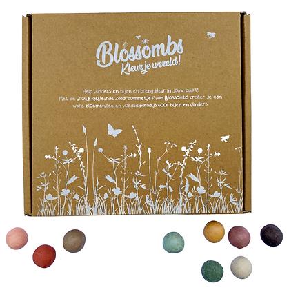 Blossombs zaadbommetjes bloemenzee