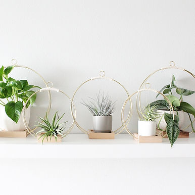 Natural Wood & Wire Plant Shelf