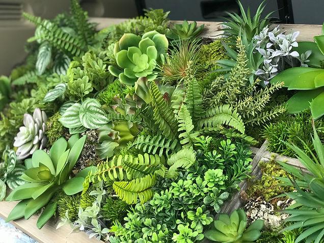 succulent wall 2.jpg