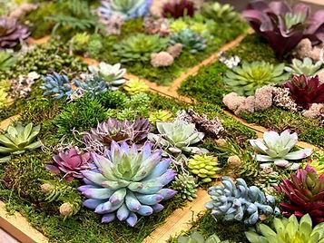 Succulent wall Art Website.jpg