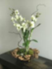 Orchid design MD.jpg