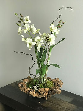 Orchid design MD.jpg