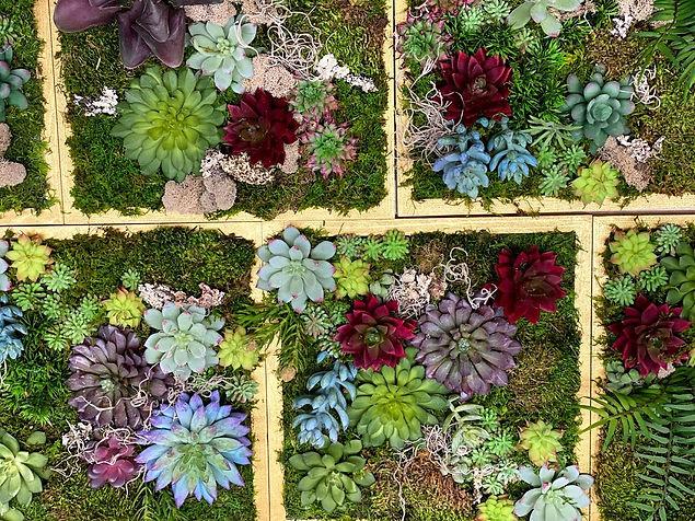 Succulent wall Art Website above.jpg