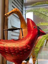 water can cardinal duck.jpg
