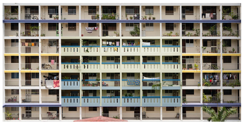hdb collage.png