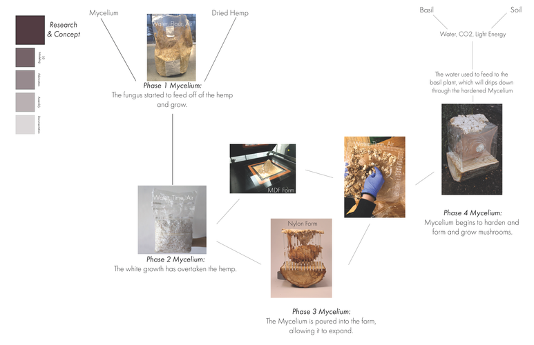 mycelium documentation_Page_05.png