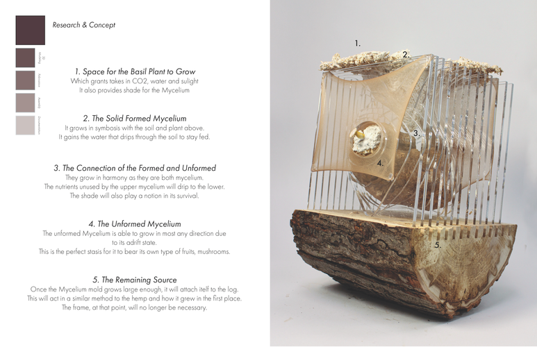 mycelium documentation_Page_04.png