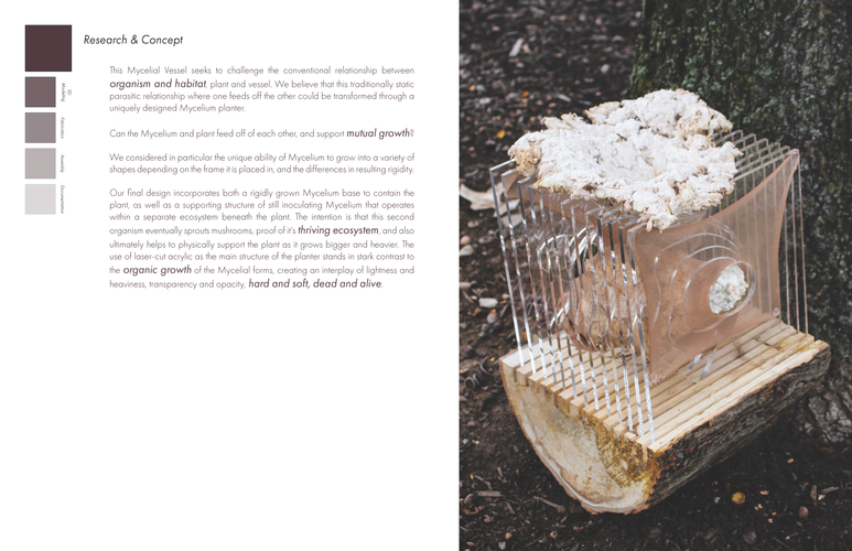 mycelium documentation_Page_03.png