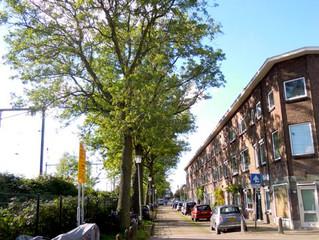 ESSEN. Pelikaanstraat, Utrecht