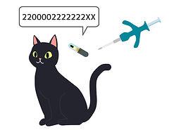マイクロチップ|猫