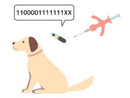 マイクロチップ|犬