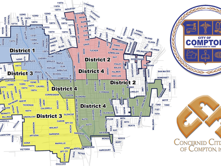 2021 Primary Election - District 2 Council Member Candidates as of Jan. 7, 2021