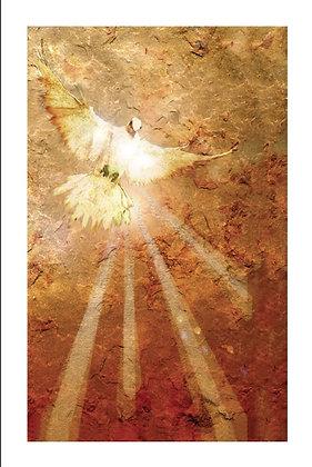 """Pentecost"""