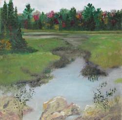 Marsh #1 (Near Bark Lake)