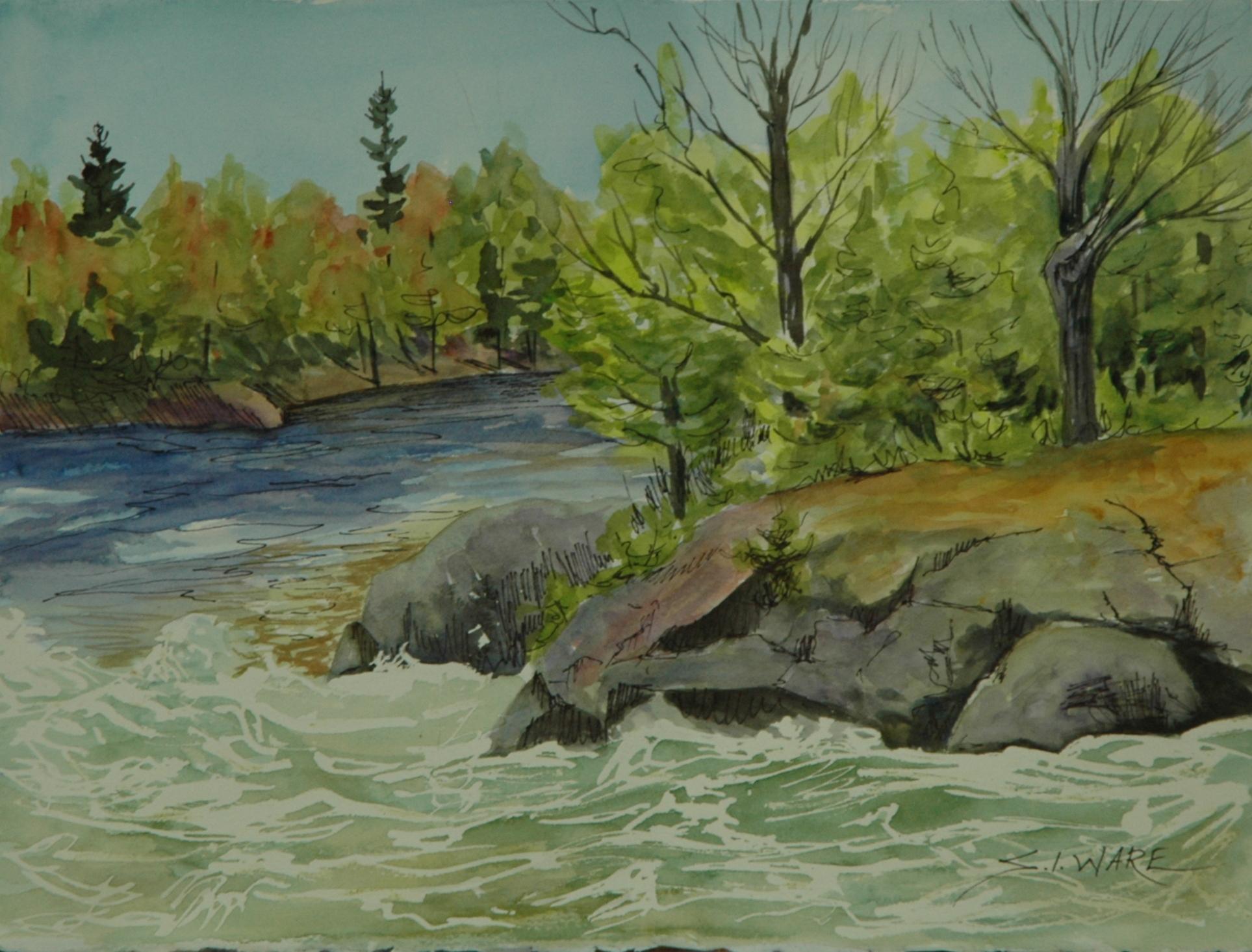 Spring Rush Trethewey Falls