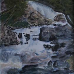 Downstream Brook's Falls