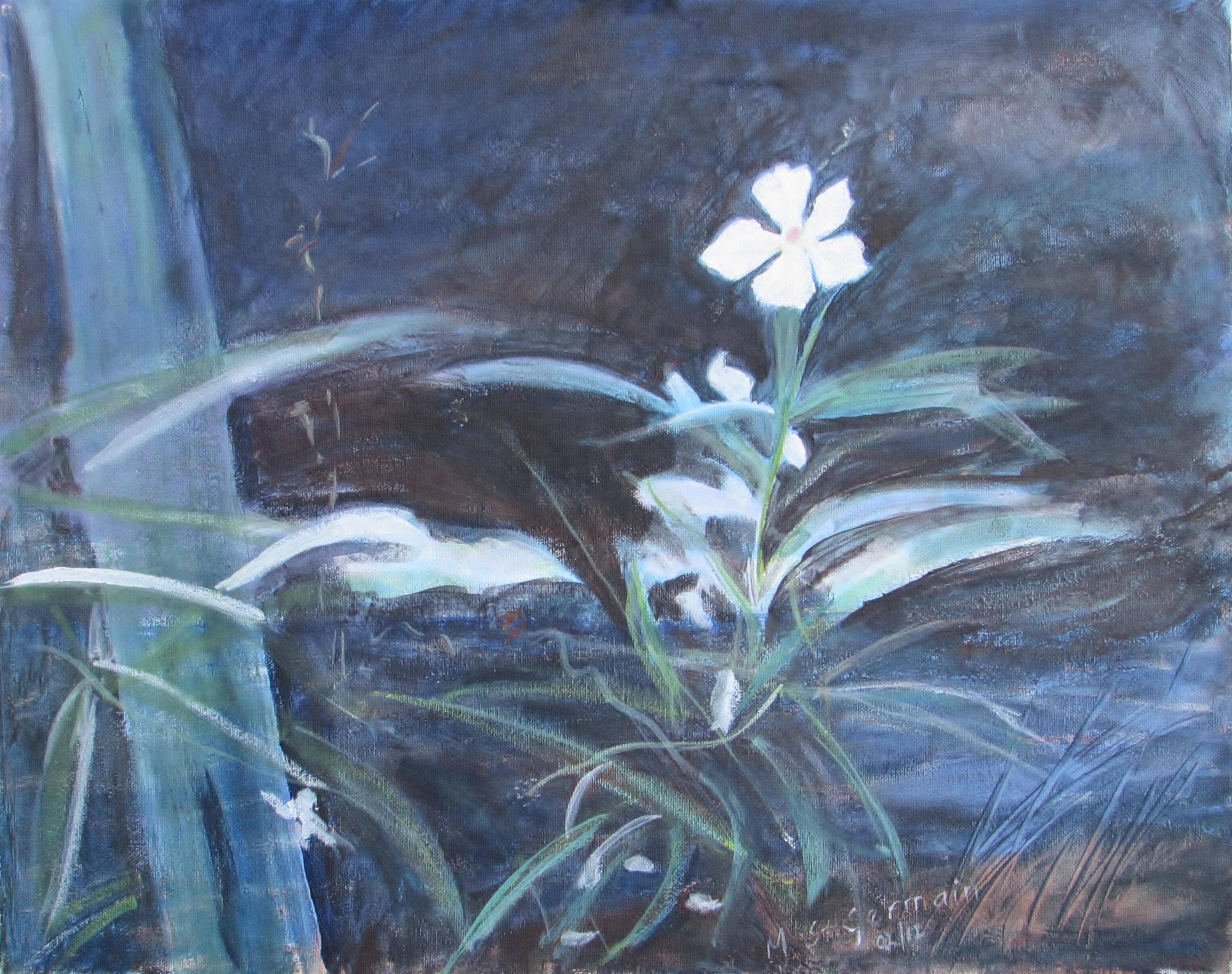 Wild Flower in Forest