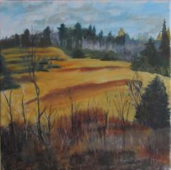 Muskoka Landscape