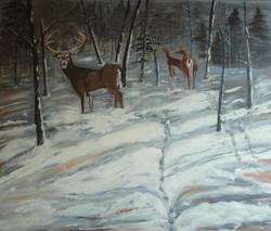 Wintering Deer