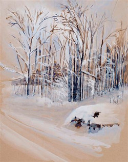 Sold - Foreman Road in Winter