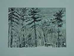Winter in Muskoka