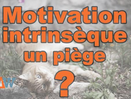 La motivation intrinsèque : un piège à la performance ?