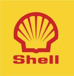shell_1.jpg