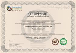 2018 Образец Сертификат бланк 1 ступень