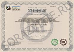 2013-сертификат-бланк-мастер-эннеа-напеч