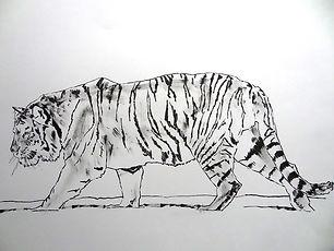 Tiger Pentel brushpen.JPG