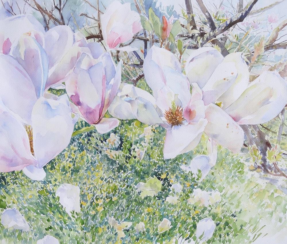 Magnolias Out