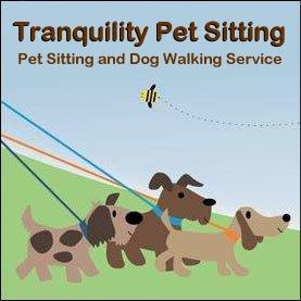 Pet Sitting Dog Walking Service Colorado Springs