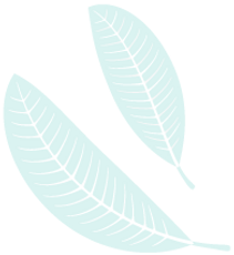 leaf2_03.png