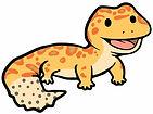 Summa_and_Sons_Leopard_Geckos_logo_Gecko