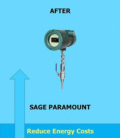 Sage Paramount After.jpg
