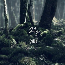 「CLØWD / 21g」