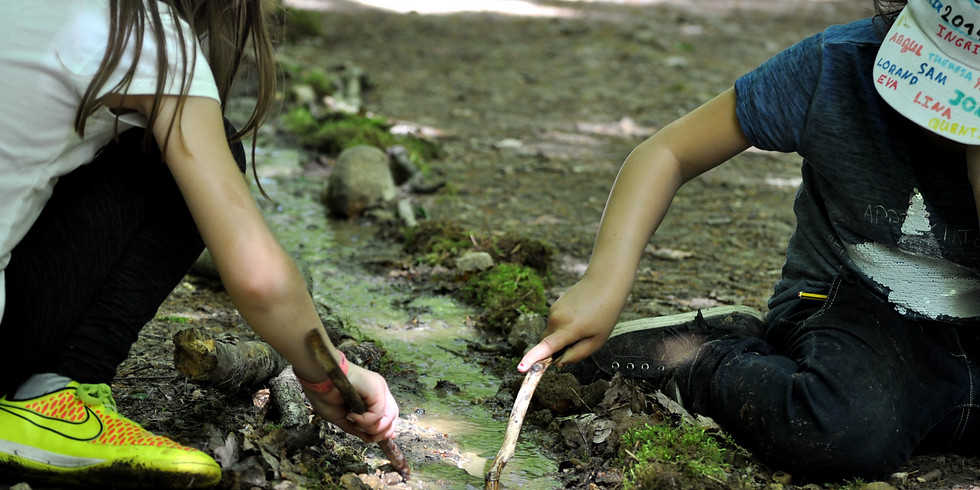 Kleine Forscher, große Aufgaben - Naturerfahrungen mit Kindern von 3-4 Jahren