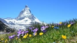 Geimpften und genesenen Schweizer*innen wird Rückreise erleichtert