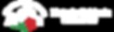 VB Logo (White).png