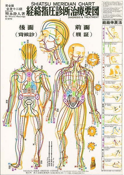Mappa dei Meridiani Zen Shiatsu