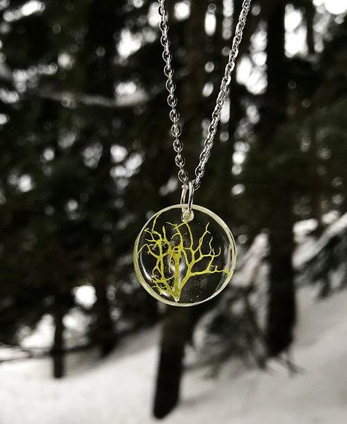 Wolf Lichen Necklace