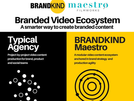 Introducing BRANDKIND-Maestro's new Branded Video Ecosystem for brand, product and social marketing