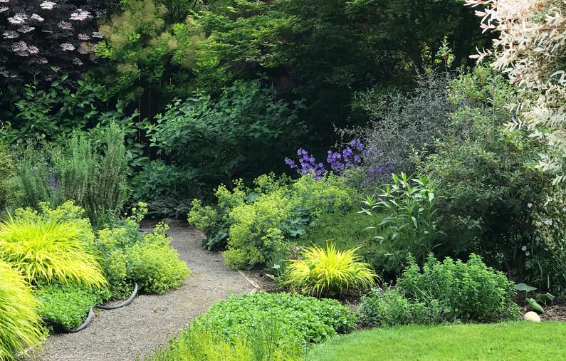 O'Donnell Garden, Beaverton, Oregon 2019