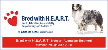 Bred With Heart banner.jpg