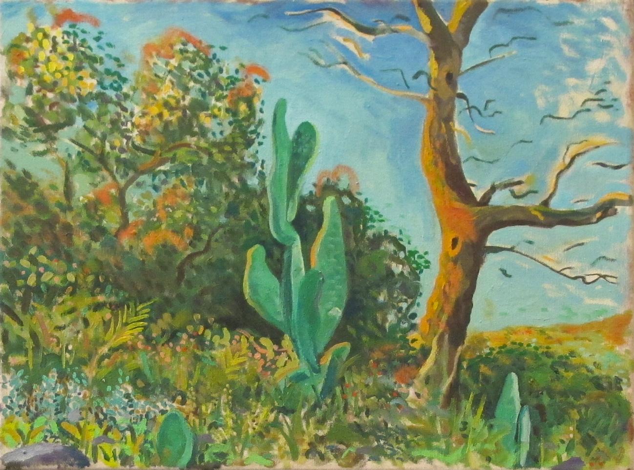 Cactus y casa del pájaro carpintero