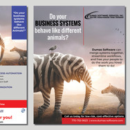 Capabilities Report Designed by our Professional Graphic/Web Designers