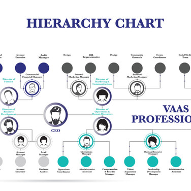 Hierarchy Infographic Created by our Professional Graphic/Web Designers