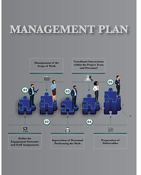 Management Plan Chart (option 2)