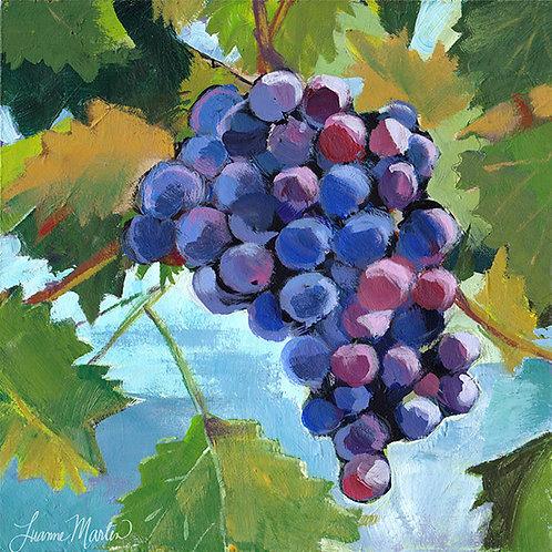 Not So Blue, grapes high quality art print